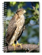 Looking For Supper Spiral Notebook