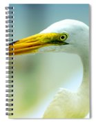 Looking For The Catch Spiral Notebook