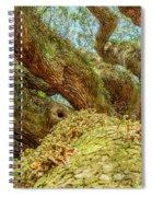 Looking Homeward Angel Spiral Notebook