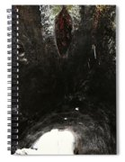 Looking Through The Hollow Trunk Of An Ancient Fallen Sequoia In Kings Canyon California Spiral Notebook