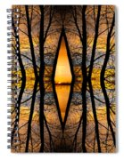 Looking Through The Trees Abstract Fine Art Spiral Notebook