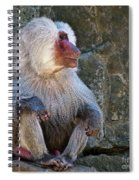 Looking To The Left Spiral Notebook