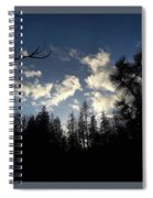 Looking To The Sky Spiral Notebook