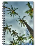 Looking Up The Hawaiian Palm Tree Hawaii Collection Art Spiral Notebook