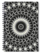 Looks Like Daisies Spiral Notebook
