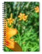 Loony  Spiral Notebook