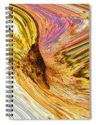 Loose Goose Spiral Notebook