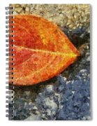 Loose Leaf Spiral Notebook