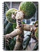 Loquat Man Photo Spiral Notebook