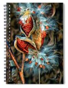 Lord Of The Dance Spiral Notebook