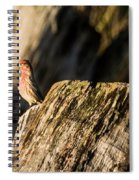 King Of The Realm Spiral Notebook
