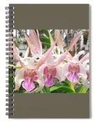 Lorie Mortimer Dendrobium Spiral Notebook