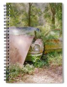 Lost Beauty Spiral Notebook
