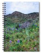 Lost Canyon Wildflowers Spiral Notebook
