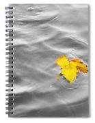 Lost  Spiral Notebook