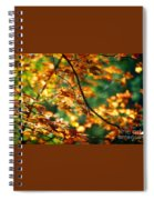 Lost In Leaves Spiral Notebook
