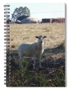 Lost Lamb Spiral Notebook