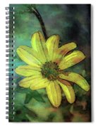 Lost Wild Flower In The Shadows 5771 Ldp_2 Spiral Notebook
