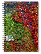 Lost Window Spiral Notebook