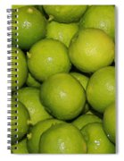 Lots Of Limes Spiral Notebook