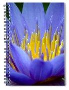 Lotus 6 Spiral Notebook