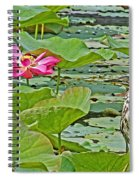 Lotus Blossom And Heron Spiral Notebook