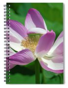 Lotus--center Of Being--protective Covering I Dl0087 Spiral Notebook