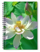 Lotus--fading I Dl0079 Spiral Notebook