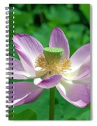 Lotus--fading IIi Dl0081 Spiral Notebook