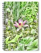 Lotus Flower Bloom In Pink 2 Spiral Notebook