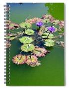 Lotus Flowers #4 Spiral Notebook