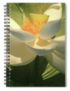 Lotus Light Spiral Notebook