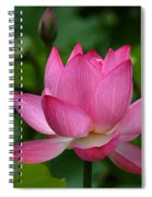 Lotus--shades Of Past And Future Dl029 Spiral Notebook