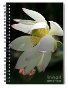 Lotus Under Cover Spiral Notebook