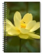 Lotus With Bee Spiral Notebook