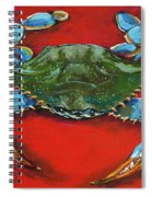 Louisiana Blue On Red Spiral Notebook