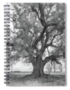 Louisiana Dreamin' Monochrome Spiral Notebook