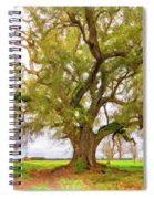Louisiana Dreamin' Spiral Notebook