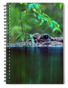 Louisiana Swimming Instructor  Spiral Notebook