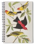 Louisiana Tanager Or Scarlet Tanager  Spiral Notebook