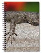 Lounge Lizard Spiral Notebook