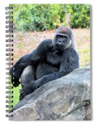 Lounging On This Rock Spiral Notebook