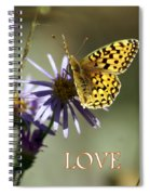 Love 1 Spiral Notebook