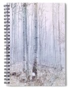 Love Amidst The Aspens Spiral Notebook