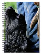 Love And Devotion Spiral Notebook