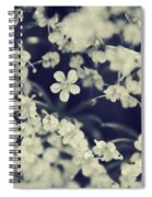 Love And Lace Spiral Notebook