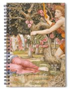 Love And The Maiden Spiral Notebook