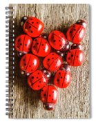 Love Bug Spiral Notebook
