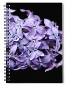 Love In Lilac Spiral Notebook