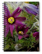 Love In The Spring Spiral Notebook